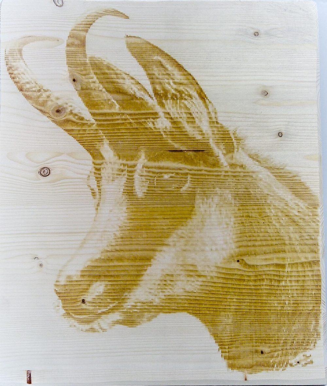 Gravure personnalisée sur bois d'un chamois