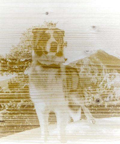 Gravure personnalisée sur bois d'un chien